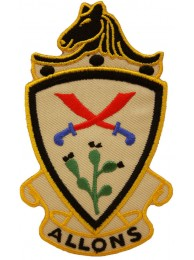 US AMRY 11th ARMORED CAVALRY RGMT INSIGNIA PATCH