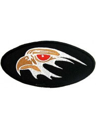 EAGLE BIKER IRON ON EMBROIDERED PATCH #13