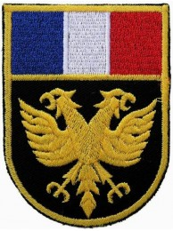 France Eagle Shield Flags Embroidered Patch #01