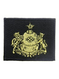 RSN SINGAPORE NAVY DIVER DIVISION PATCH #02